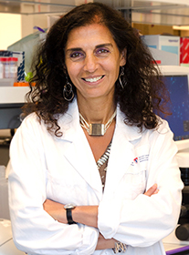 Dr. Jabado is a senior scientist in the Child Health and Human Development Program at the Research Institute of the McGill University Health Centre