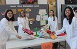 STEAM Partnership with the EMSB: Students return to Research Institute to showcase projects to scientists!