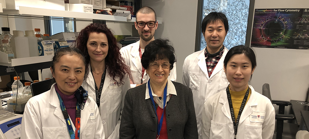 "Pnina Brodt, PhD (centre) with some co-authors of the study ""Sexual dimorphism and the role of estrogen in the immune microenvironment of liver metastases"", from left to right: Ni Wang, Stéphanie Perrino, Simon Milette (first author), Masakazu Hashimoto and Shu Qi."