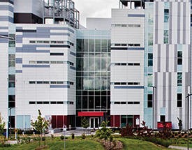 New Leadership Options for Research Institute of the MUHC Being Explored
