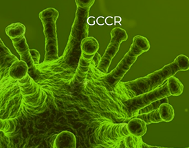 RI-MUHC investigator joins Global Consortium of Chemosensory Researchers (GCCR) in rapid response to COVID-19